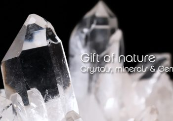 May 15 – Gift of Nature 101 & 102 with Jerry Santosh