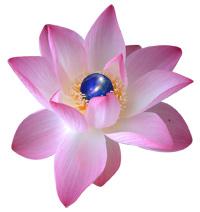 Living Light Energy (Sekhem) 生命之光能量–古埃及能量療癒法  LEVEL 2 with Ruby T Ong
